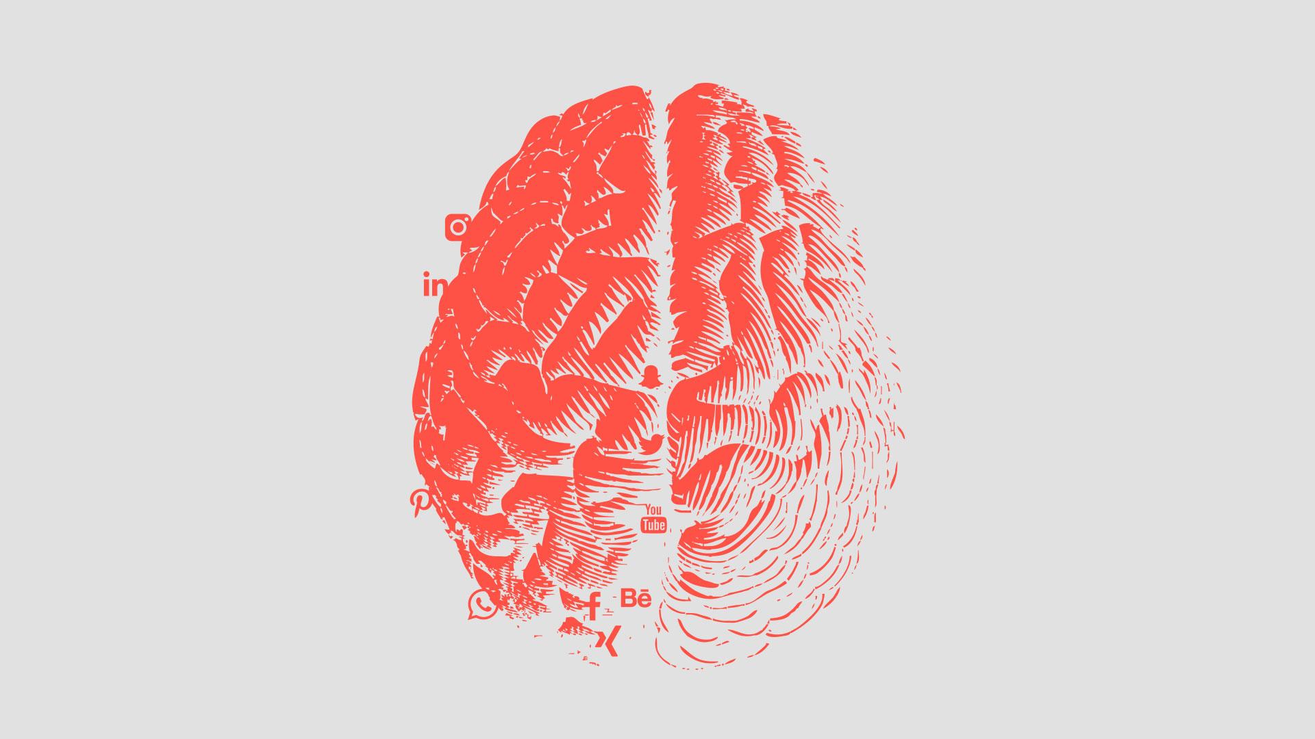 Gehirn Grafik mit Social Media-Icons